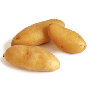 fingerling-potatoes