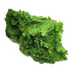 green-leaf-lettuce