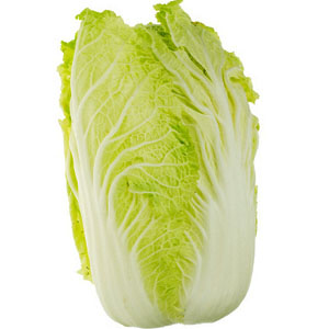napa-cabbage